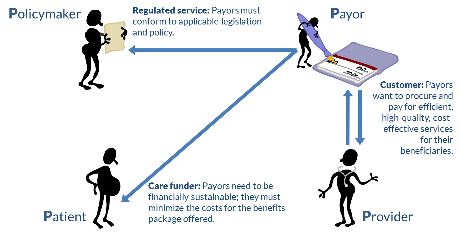 Figure 6. The payors' viewpoint